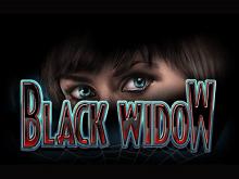 На деньги играть в Black Widow от IGT Slots